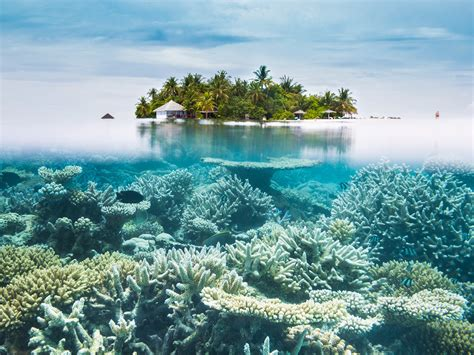 best island of maldives top 25 best island beaches for swimming and snorkeling