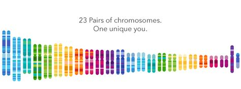 genetic testing 23andme genetic testing company new offers