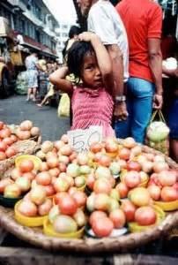 alimento salubre derecho a la alimentaci 243 n humanium concretamos los