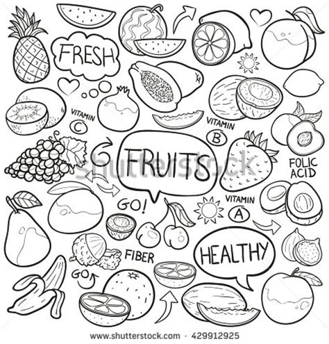 doodle fruit fruit doodles stock images royalty free images vectors