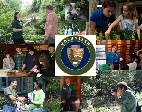 volunteer frederick law olmsted national historic site