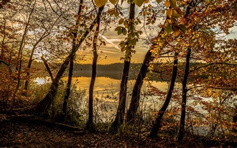 Dusk Autumn Forest Lake Water Autumn Forest Trees Lake Clouds Dusk Wallpapers