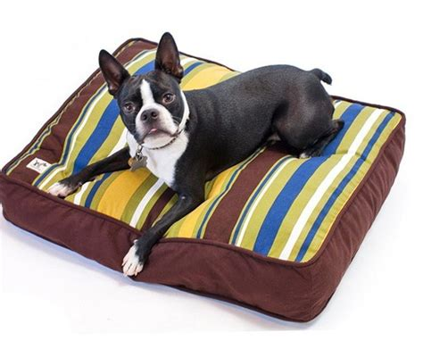 kong lounger dog bed kong dog beds latest furniture with red brown wide