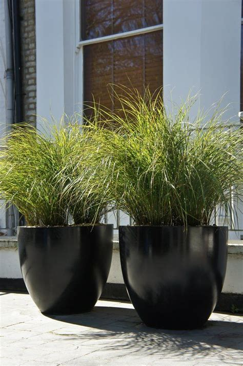 modern plant pots 25 best ideas about artificial outdoor plants on