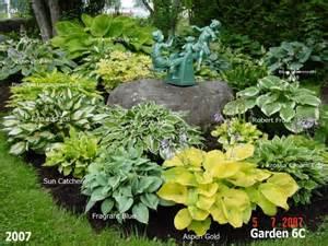 Hosta Garden Ideas 1000 Ideas About Hosta Gardens On Hosta Plants Shade Garden And Gardening
