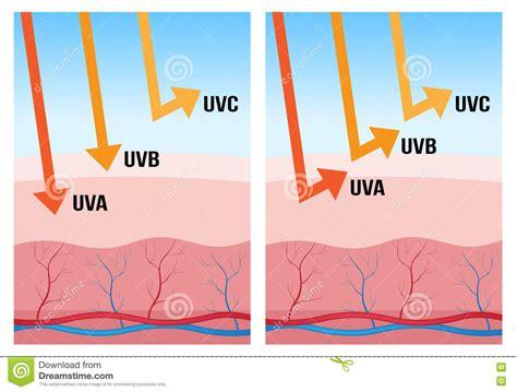 uv l vitamin uv a uv b en uv c bescherming stock illustratie