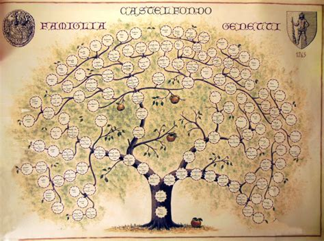 Family Birth Records Family Tree The Genetti Family Genealogy Project