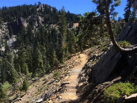 pacific crest trail sections a new section of the pacific crest trail is open in the