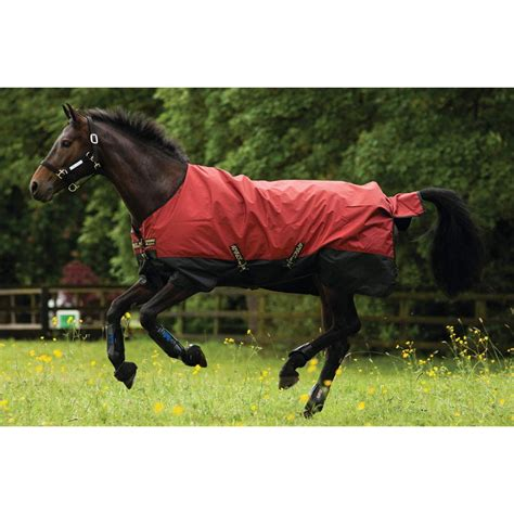 Amigo Mio Stable Rug by Horseware Rugs Naylors