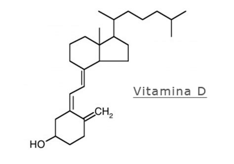 alimenti ricchi di vitamina d3 vitamina d carenza sintomi e soluzioni