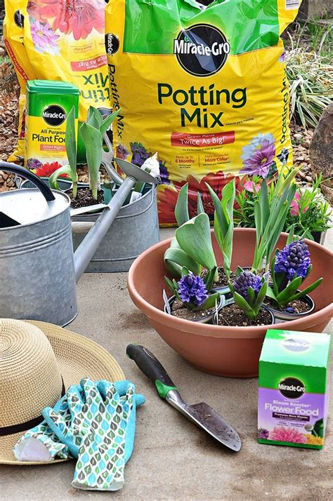 best potting mix for container gardening 16 best images about gardening on greenhouses