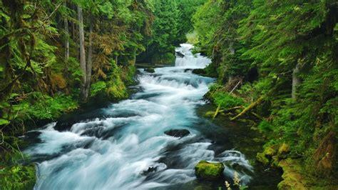 kata mutiara bahasa inggris tentang sungai rivers