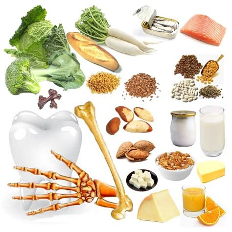 alimentos con alto contenido en calcio minerales en nuestra dieta calcio macromineral