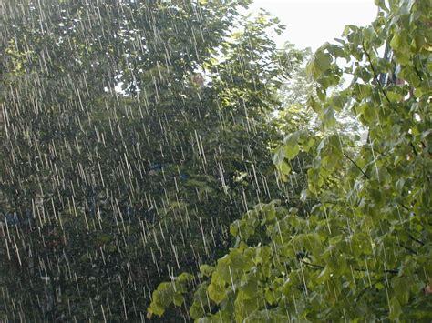 imagenes mamonas de lluvia voy a llenar este hilo con fotos de lluvia mediavida