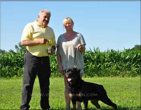 rottweiler breeders in mn pin rottweiler puppies mn cake on