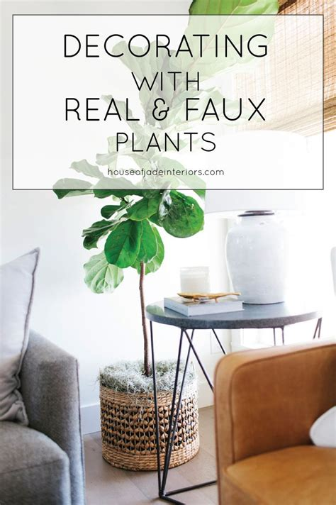 plants home decor 9 jpg tips for decorating with real and faux plants house of