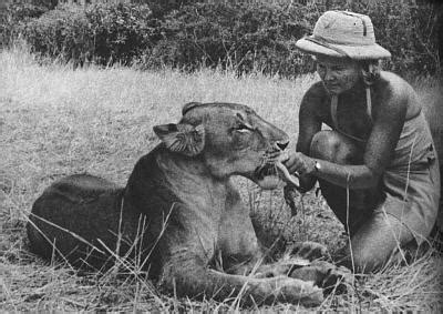 film elsa the lioness joy adamson author of born free with elsa the lioness