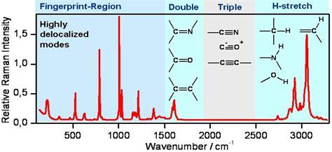 test polimi coherent raman spectroscopy and microscopy dipartimento