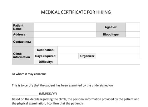 28 fit to fly certificate template medical