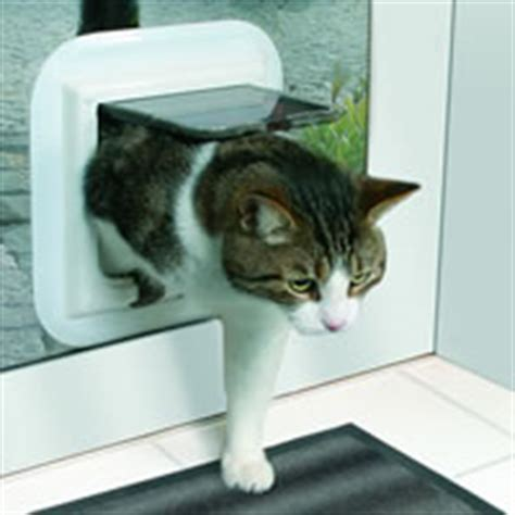 Putting Cat Flap In Glass Door by Cat Flap Glazed Door In South South