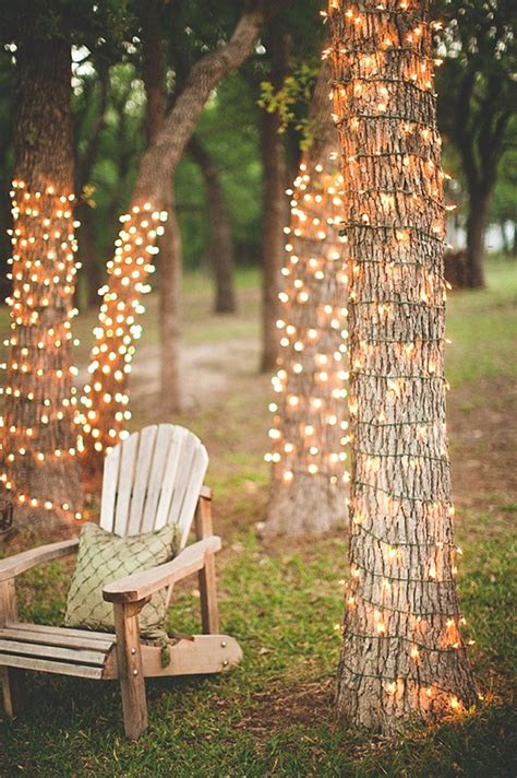 wrap lights around tree trunks all things venue pinterest