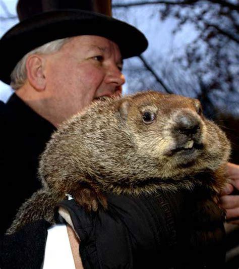 groundhog day zen groundhog day well happy peaceful
