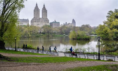 in park new york s central park in springtime exploring our world
