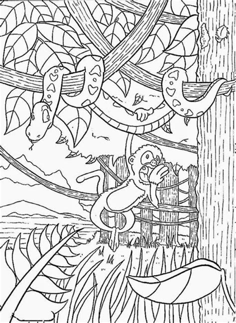 Rainforest Animals Coloring Pages by Rainforest Coloring Pictures Free Coloring Pictures