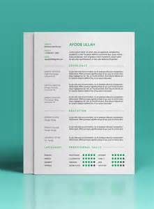 Free Eye Catching Resume Templates by 27 Magnificent Cv Designs That Will Outshine All The Others Seenox