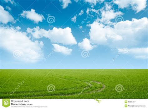 green grass and blue sky landscape royalty free stock