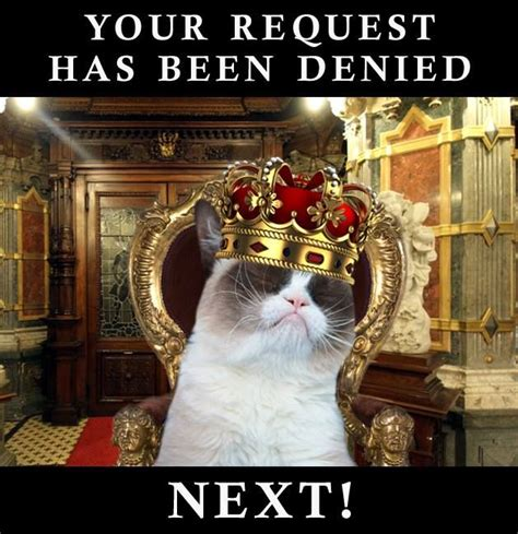 Denied Meme - your request has been denied grumpy cat love pinterest