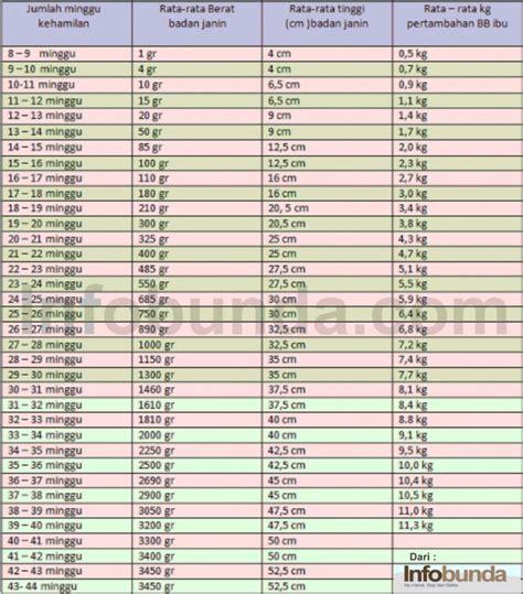 Berapa Timbangan Berat Badan by Berapa Normal Berat Badan Janin Usia 20 Minggu