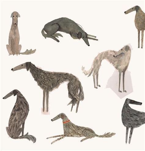 dog illustration illustration pinterest