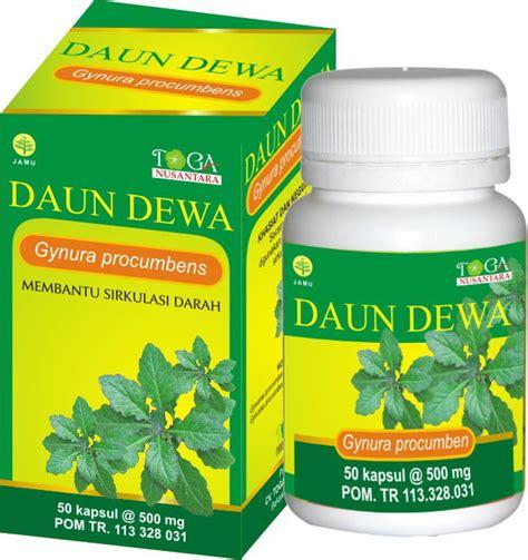 Sari Daun Dewa Gynura Procumbens Folium myasiaoutlet indonesia daun dewa lancarkan sirkulasi darah