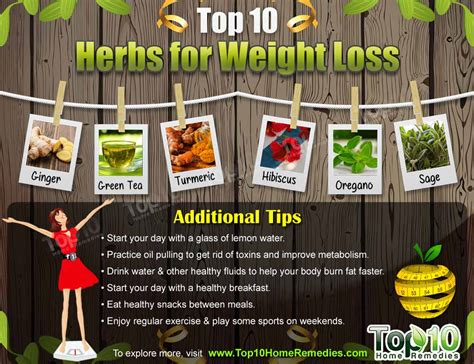 weight loss herbs top 10 herbs for weight loss top 10 home remedies