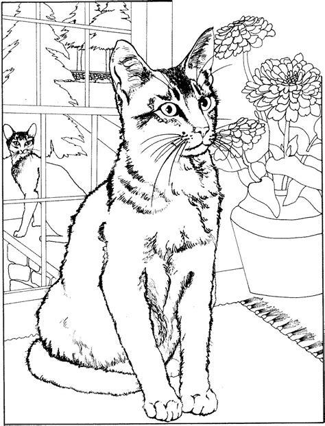 easter cats kittens coloring book books dessins 224 colorier chats coloriages pour enfants