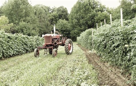 Oh Ma Grain Organic farm photos localharvest