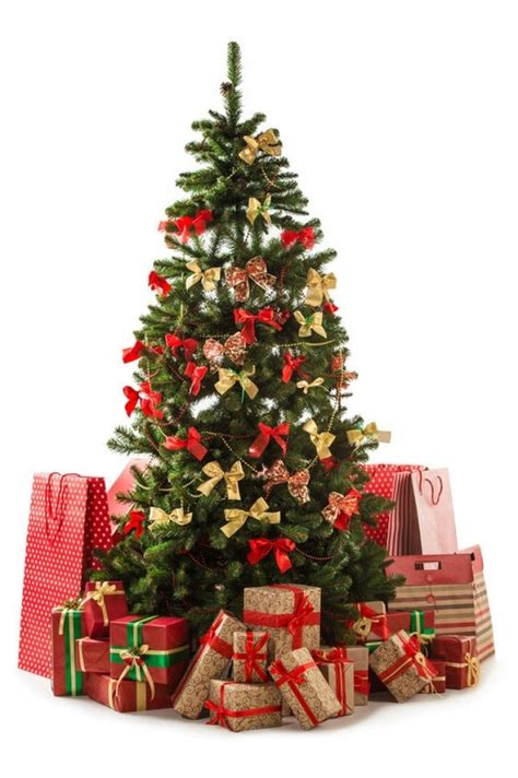 top 10 pictures of christmas trees for christmas day christmas tree decorations ideas red and gold designcorner