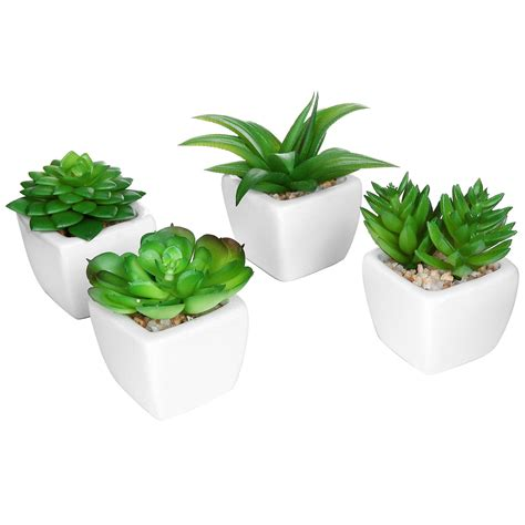 mini plants the 10 best artificial plants to use by your swimming pool