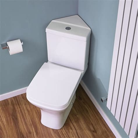 Corner Toilets For Small Bathrooms by The Toilet Buyer S Guide Big Bathroom Shop