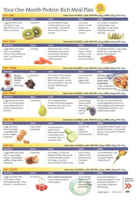 protein meal plan your one month protein rich meal plan week 1 fitness