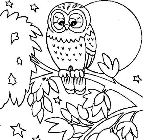 coloring pages of owls to print cute owl free printable owl coloring pages gianfreda net