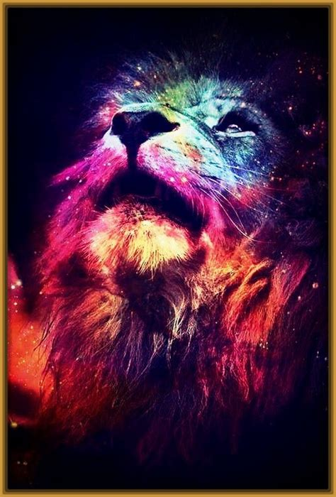 imagenes fondo de pantalla para celular leones para fondo de pantalla archivos imagenes de leones