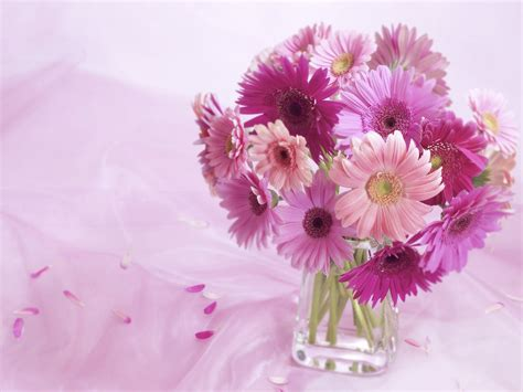 Beautiful Vase Of Flowers by Beautiful Flower Wallpapers For You Vase Of Flowers Wallpaper