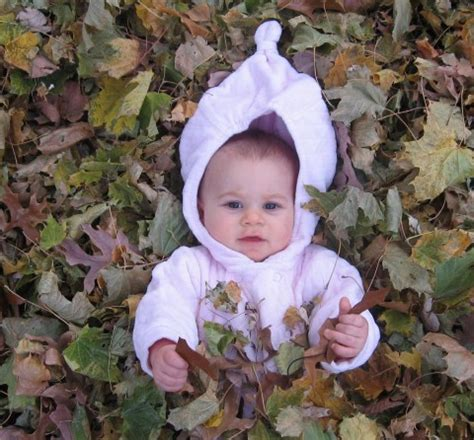 eclsia in dogs pro ecclesia pro familia pro civitate my favorite season autumn is here