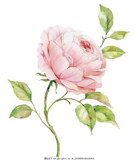 手绘花朵图片唯美 手绘