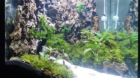 indahnya air terjun   aquascape youtube