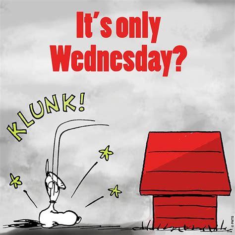 wednesday humor images  pinterest wednesday