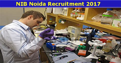 bench technician jobs nib noida bench biologist jobs 2017