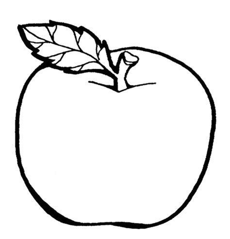templates for pages apple the delicious fruit apple coloring page colouring